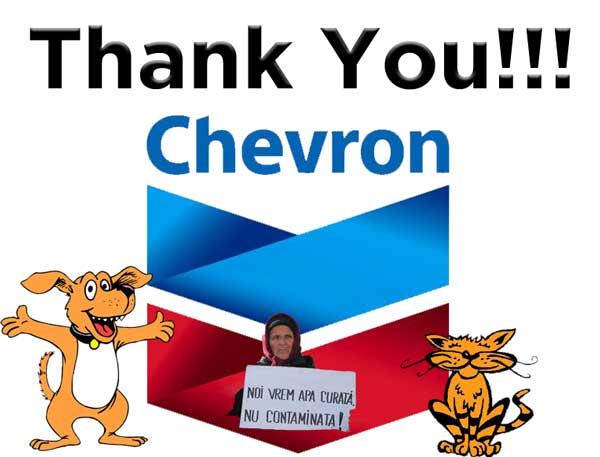 multumim-chevron