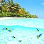 idyllic_island_life_43