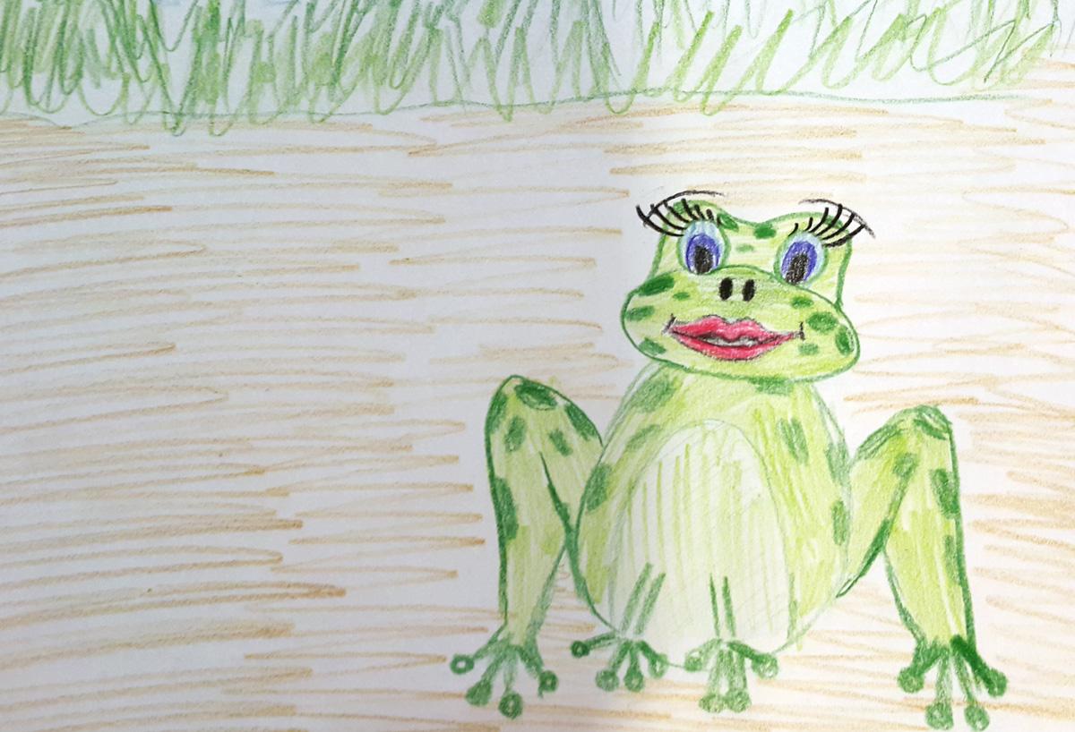 broscuta-dornica