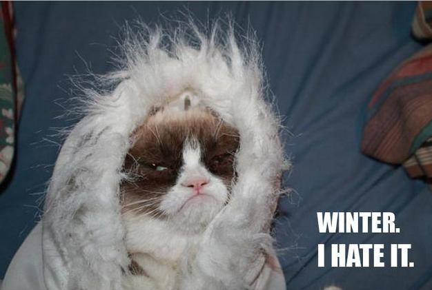 urasc iarna