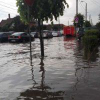ploaie la cluj (2)