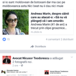 avocat nicusor teodorescu (3)