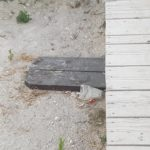 gunoaie plaja (1)
