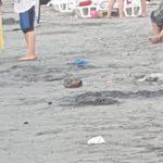 gunoaie plaja (12)