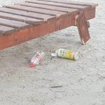 gunoaie plaja (14)