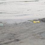 gunoaie plaja (16)