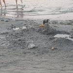 gunoaie plaja (17)