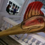 hatzegopteryx-(1)