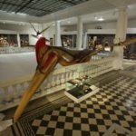 hatzegopteryx-(6)