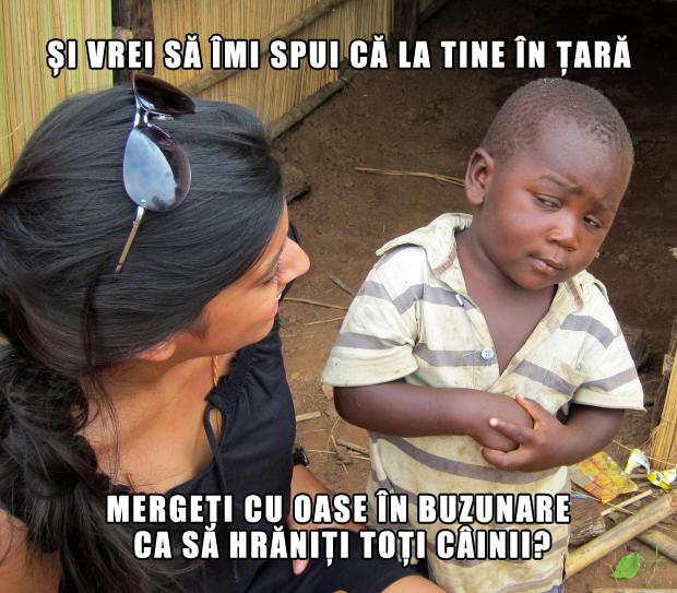 meme-andreea-marin