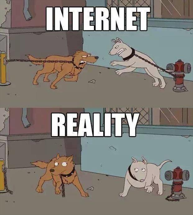 internet-vs-realitate